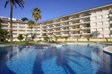 Apartment in Miami Playa - FLAM114 Planta baja 1ª linea, piscina, Wifi gratis