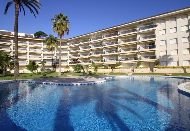 Appartement à Miami Playa - FLAM414 Apartamento 1ª línea, piscina, Wifi gratis
